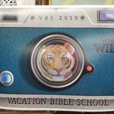 VBS In The Wild 2019